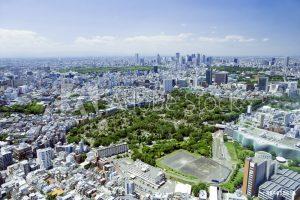 事務所が渋谷に移転しました。